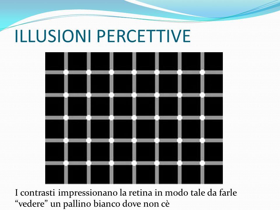 ILLUSIONI PERCETTIVE I contrasti impressionano la retina in modo tale da farle vedere un pallino bianco dove non cè