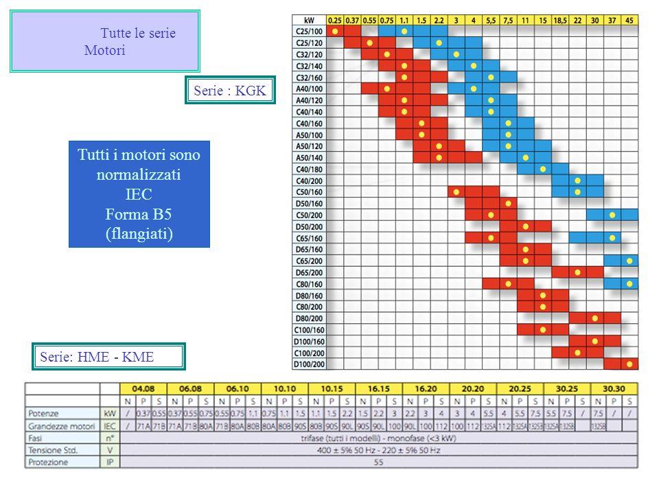 Tutte le serie Motori Serie: HME - KME Serie : KGK Tutti i motori sono normalizzati IEC Forma B5 (flangiati)