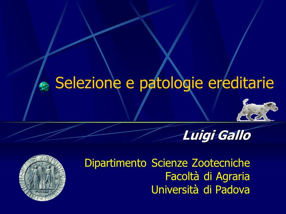 Selezione e patologie ereditarie Luigi Gallo Dipartimento Scienze Zootecniche Facoltà di Agraria Università di Padova