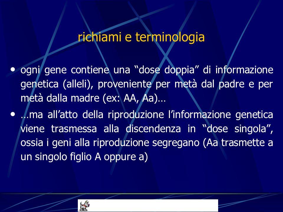 richiami e terminologia ogni gene contiene una dose doppia di informazione genetica (alleli), proveniente per metà dal padre e per metà dalla madre (e
