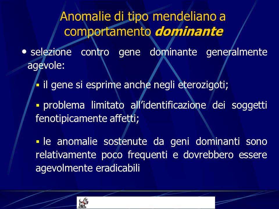 selezione contro gene dominante generalmente agevole: il gene si esprime anche negli eterozigoti; problema limitato allidentificazione dei soggetti fe