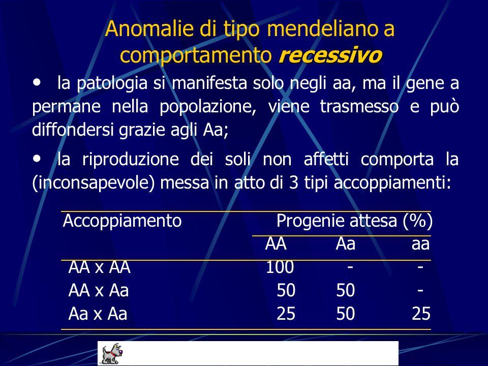 la patologia si manifesta solo negli aa, ma il gene a permane nella popolazione, viene trasmesso e può diffondersi grazie agli Aa; la riproduzione dei