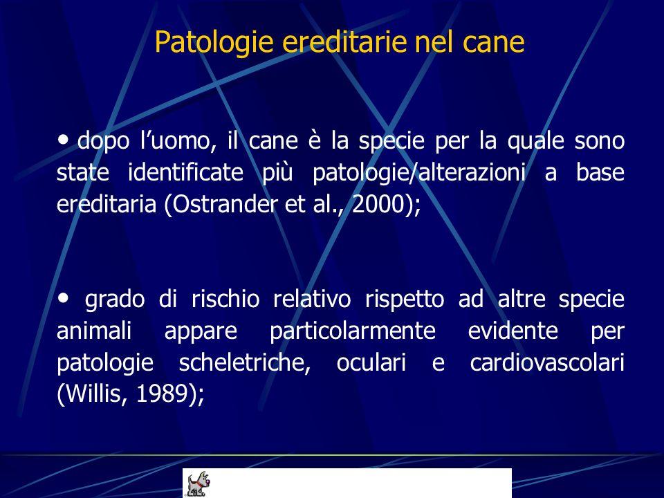 dopo luomo, il cane è la specie per la quale sono state identificate più patologie/alterazioni a base ereditaria (Ostrander et al., 2000); grado di ri