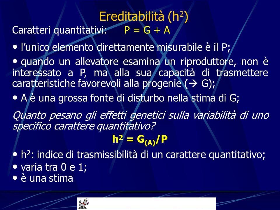 Caratteri quantitativi: P = G + A lunico elemento direttamente misurabile è il P; quando un allevatore esamina un riproduttore, non è interessato a P,