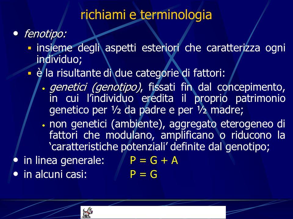 esame radiografico = valutazione fenotipica (perf.