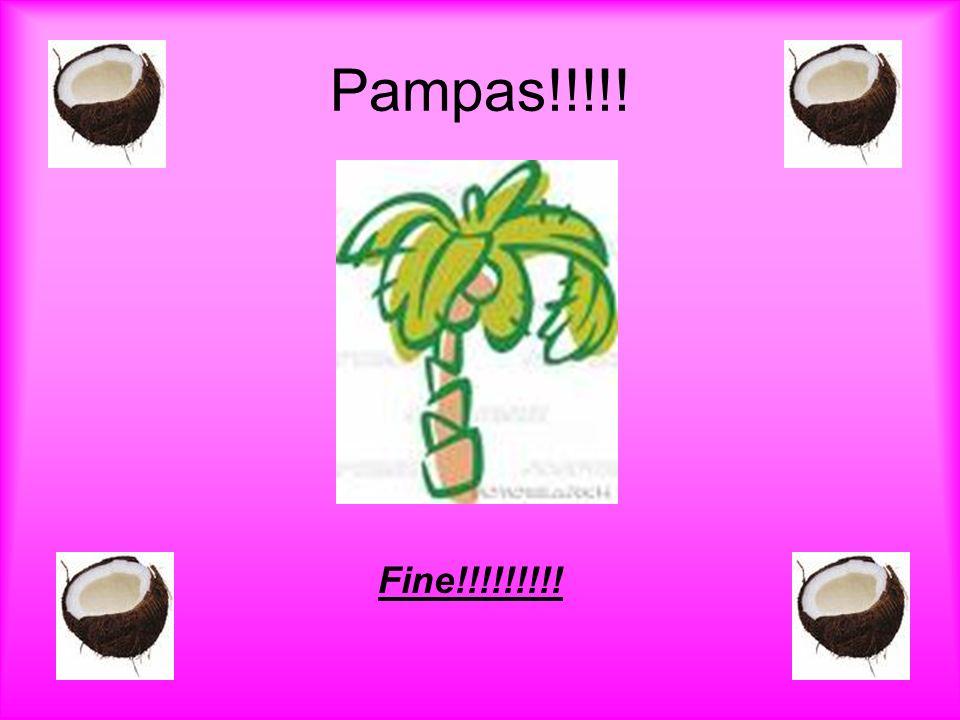 Fine!!!!!!!!! Pampas!!!!!