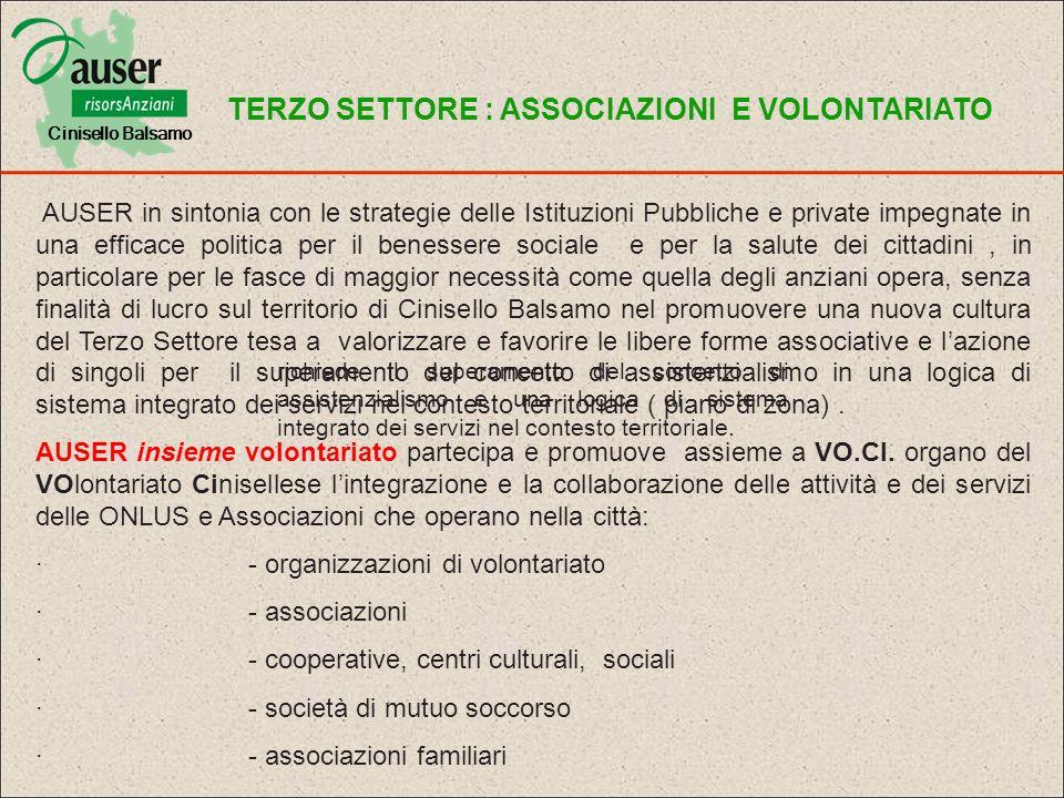 Partner Associazionismo Pubblici Istituzionali Provincia AUSER Milano CIESSEVI Sindacato CGIL – SPI ANTEAS – CISL Coop.