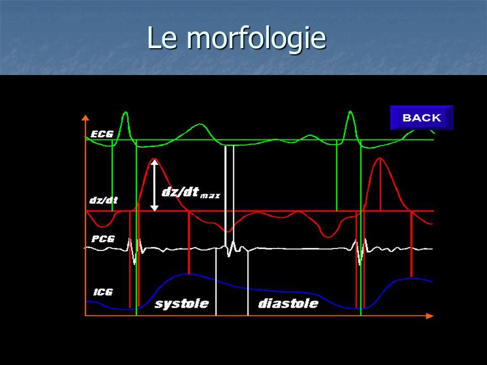 emodinamica - framar biomedica Le morfologie