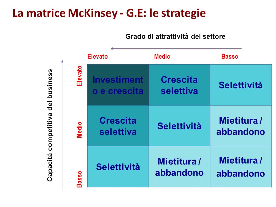 ANALISI SITUAZIONE ATTUALE Fase 1 Definizione dei fattori critici interni ed esterni Fase 2 Valutazione dei fattori esterni Fase 3 Valutazione dei fattori interni Fase 4 Posizionamento del business nella matrice La matrice McKinsey - G.E: le strategie