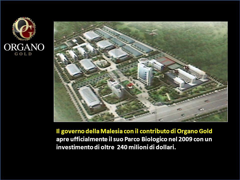 Dual team (esempio) Tu Silver 7,5 Amico Gold 1300 Amico Silver 500 7,5 su 1000 Avanza 800sx Avanza 800 1 Amico Oro 1300 2 A.
