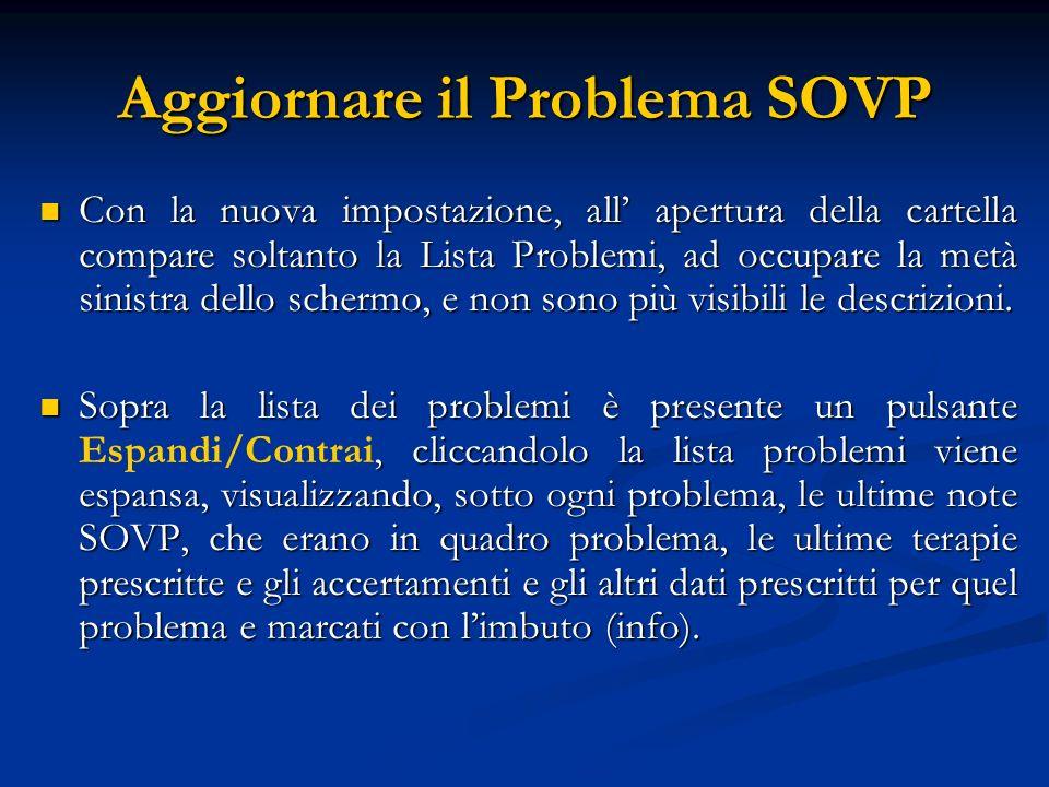 Aggiornare il Problema SOVP Con la nuova impostazione, all apertura della cartella compare soltanto la Lista Problemi, ad occupare la metà sinistra de