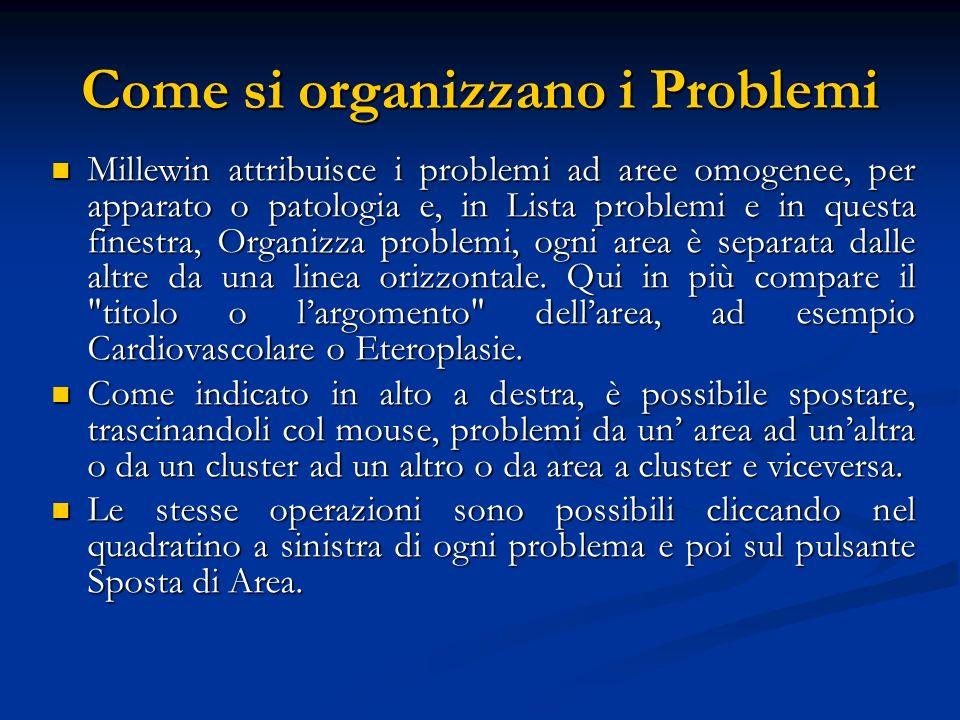 Come si organizzano i Problemi Millewin attribuisce i problemi ad aree omogenee, per apparato o patologia e, in Lista problemi e in questa finestra, O