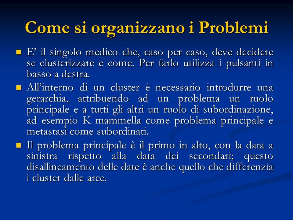 Come si organizzano i Problemi E il singolo medico che, caso per caso, deve decidere se clusterizzare e come. Per farlo utilizza i pulsanti in basso a