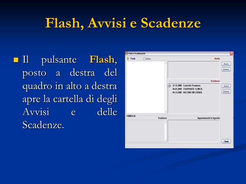 Flash, Avvisi e Scadenze Il pulsante Flash, posto a destra del quadro in alto a destra apre la cartella di degli Avvisi e delle Scadenze. Il pulsante