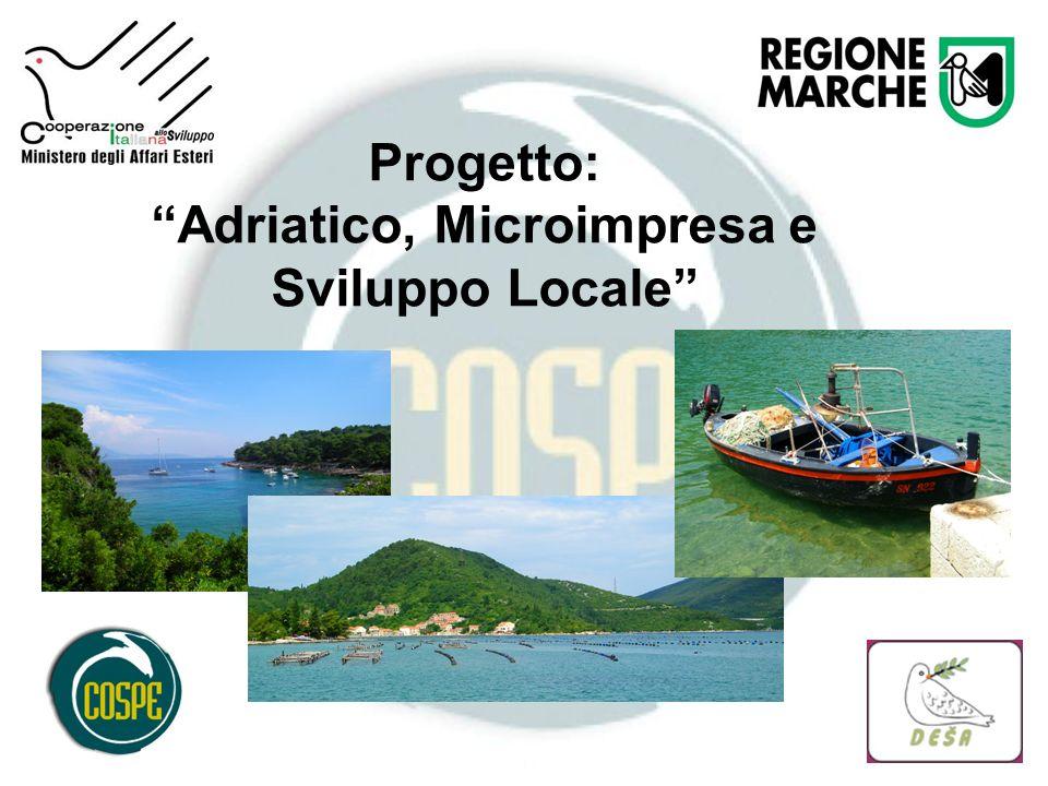 Progetto: Adriatico, Microimpresa e Sviluppo Locale