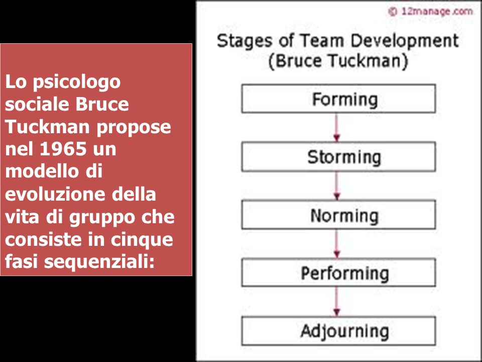 Lo psicologo sociale Bruce Tuckman propose nel 1965 un modello di evoluzione della vita di gruppo che consiste in cinque fasi sequenziali: