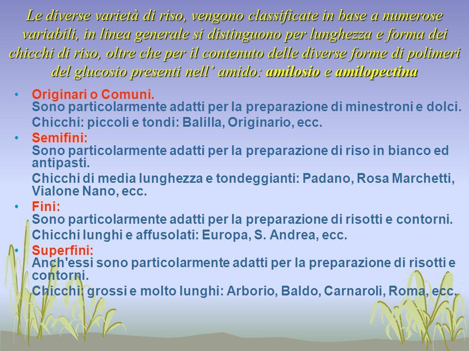 Qualità = varietà http://www.risoitaliano.org/RITA/HOME/Varie/ElencoVR.cfm Il riso Arborio è perfetto per il risotto, mantiene bene la cottura e appare sempre piuttosto sgranato per merito dei contenuti prevalenti di amilosio.
