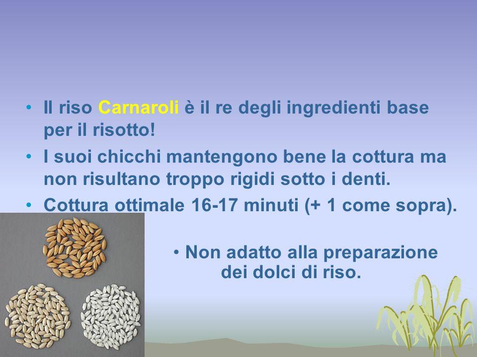Il riso Carnaroli è il re degli ingredienti base per il risotto! I suoi chicchi mantengono bene la cottura ma non risultano troppo rigidi sotto i dent