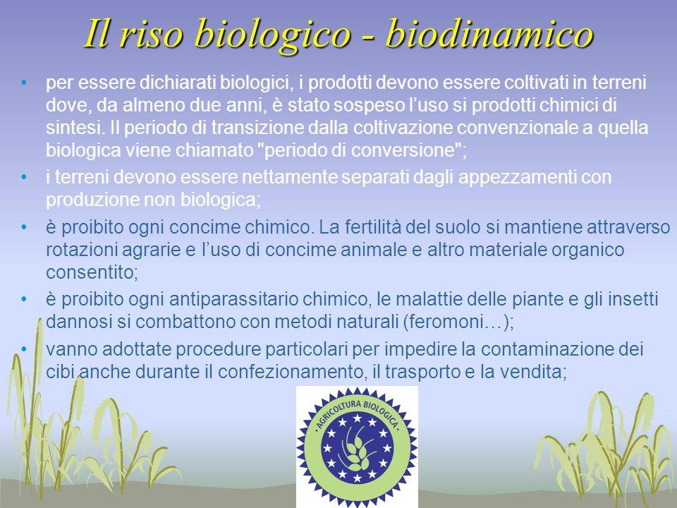 Il riso biologico - biodinamico per essere dichiarati biologici, i prodotti devono essere coltivati in terreni dove, da almeno due anni, è stato sospe