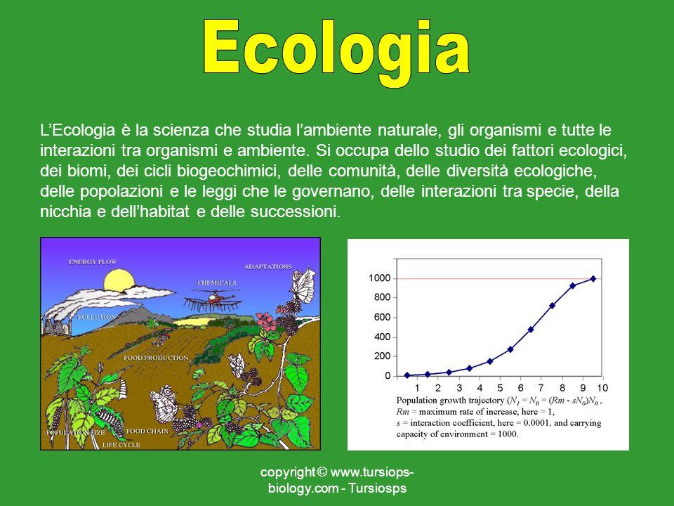 copyright © www.tursiops- biology.com - Tursiosps LEcologia è la scienza che studia lambiente naturale, gli organismi e tutte le interazioni tra organ