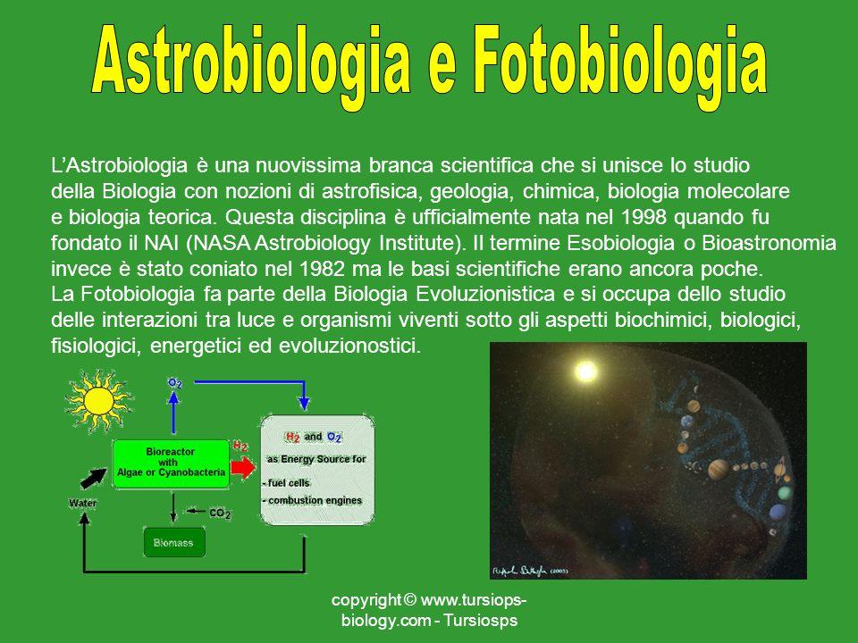 copyright © www.tursiops- biology.com - Tursiosps LAstrobiologia è una nuovissima branca scientifica che si unisce lo studio della Biologia con nozion