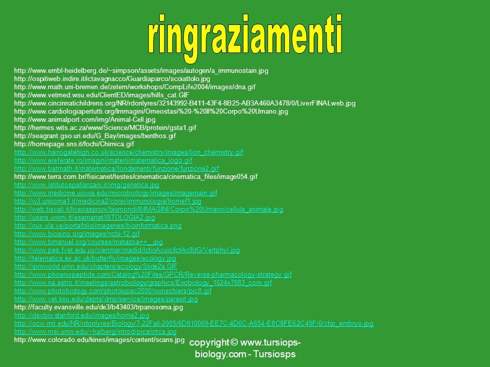 copyright © www.tursiops- biology.com - Tursiosps http://www.embl-heidelberg.de/~simpson/assets/images/autogen/a_immunostain.jpg http://ospitiweb.indi