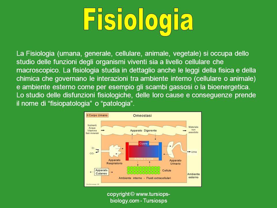 copyright © www.tursiops- biology.com - Tursiosps La Fisiologia (umana, generale, cellulare, animale, vegetale) si occupa dello studio delle funzioni