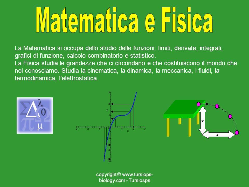 copyright © www.tursiops- biology.com - Tursiosps La Matematica si occupa dello studio delle funzioni: limiti, derivate, integrali, grafici di funzion