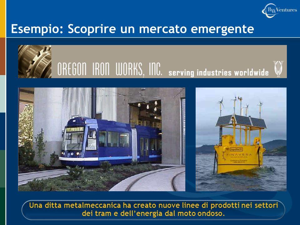 Esempio: Scoprire un mercato emergente Una ditta metalmeccanica ha creato nuove linee di prodotti nei settori dei tram e dellenergia dal moto ondoso.