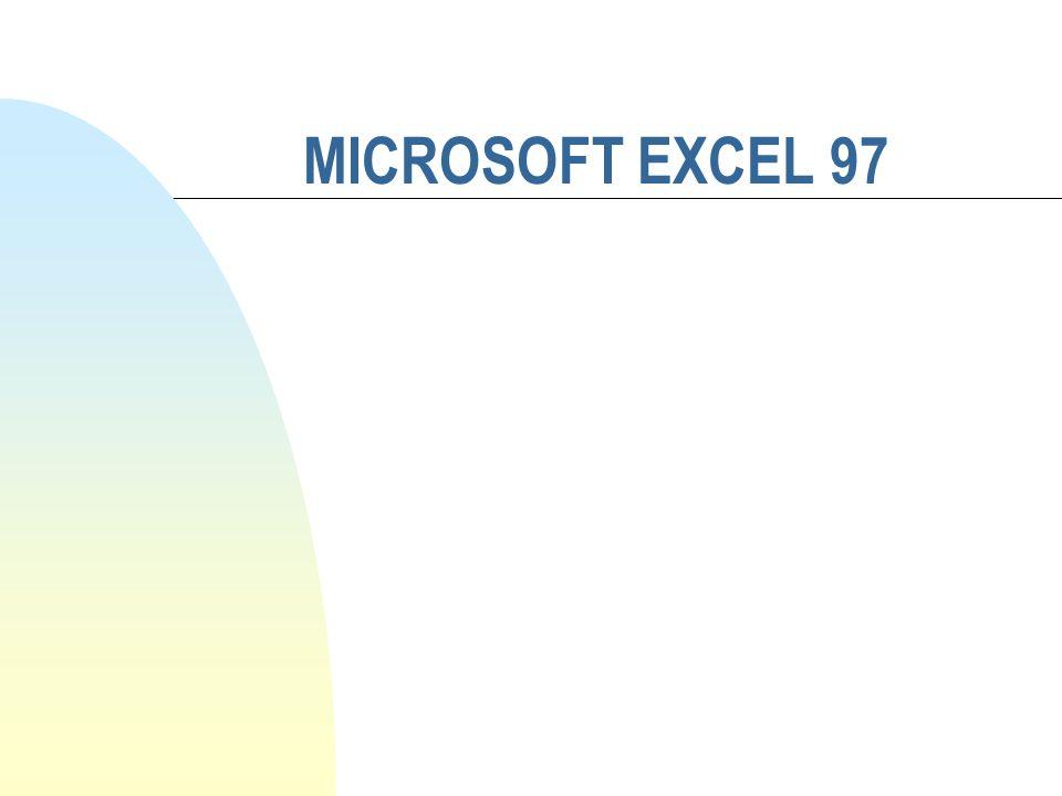MICROSOFT EXCEL 97