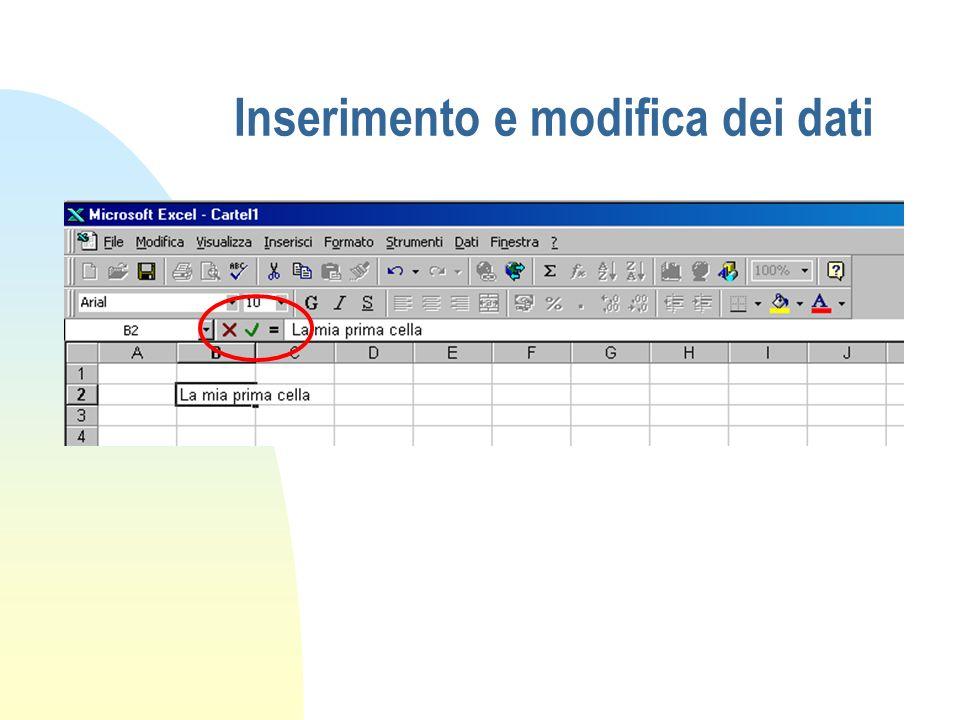 Inserimento e modifica dei dati