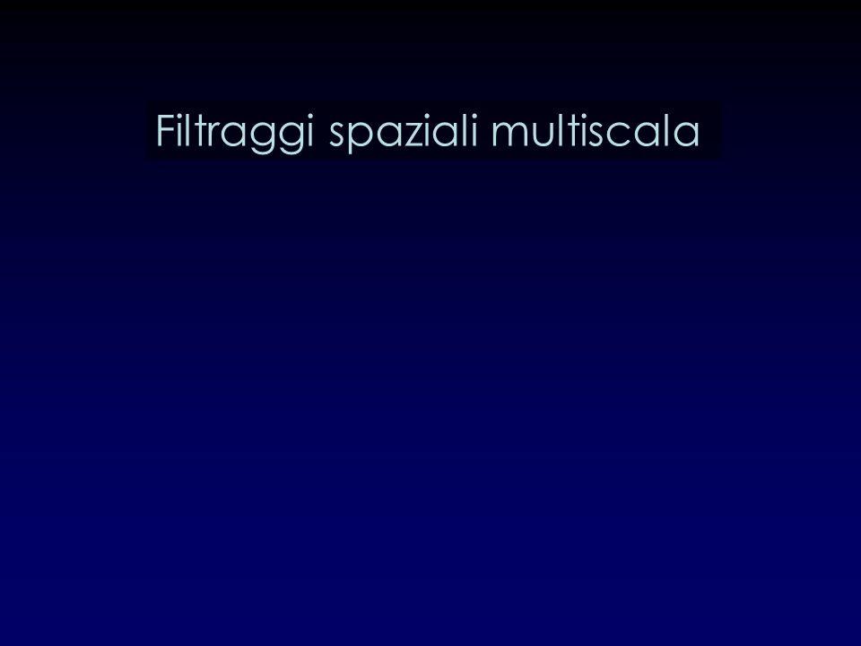 Filtraggi spaziali multiscala