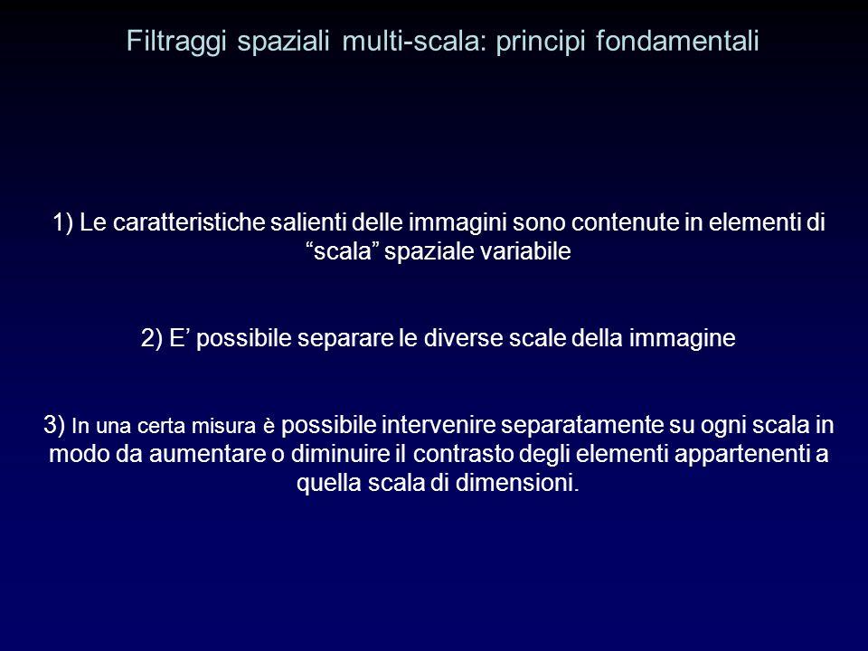 Filtraggi spaziali multi-scala: principi fondamentali 1) Le caratteristiche salienti delle immagini sono contenute in elementi di scala spaziale variabile 2) E possibile separare le diverse scale della immagine 3) In una certa misura è possibile intervenire separatamente su ogni scala in modo da aumentare o diminuire il contrasto degli elementi appartenenti a quella scala di dimensioni.