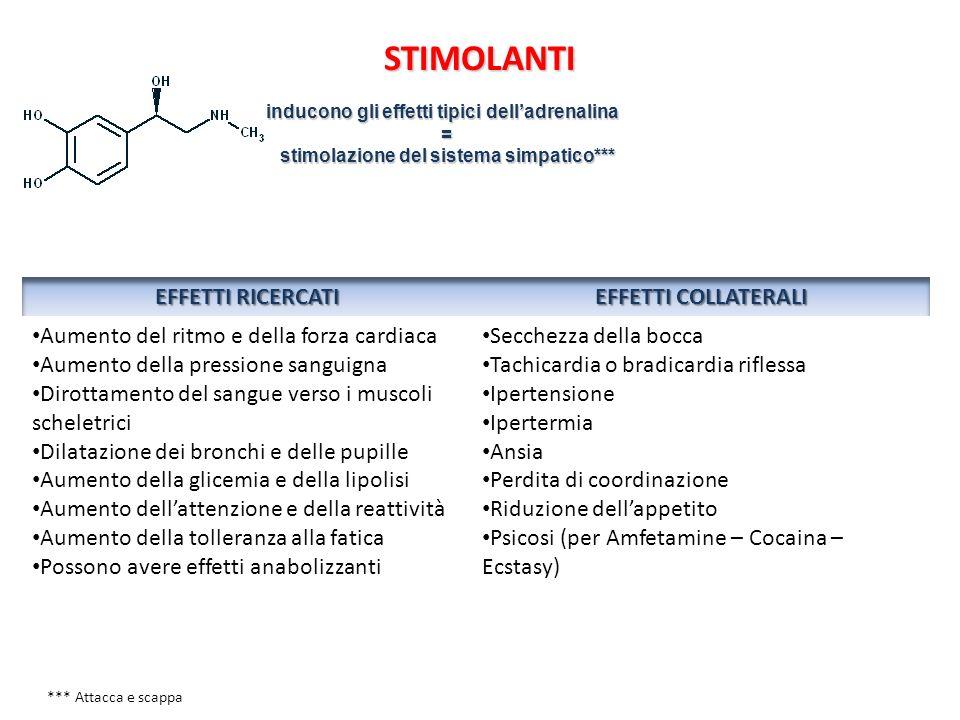 STIMOLANTI inducono gli effetti tipici delladrenalina = stimolazione del sistema simpatico*** stimolazione del sistema simpatico*** *** Attacca e scap