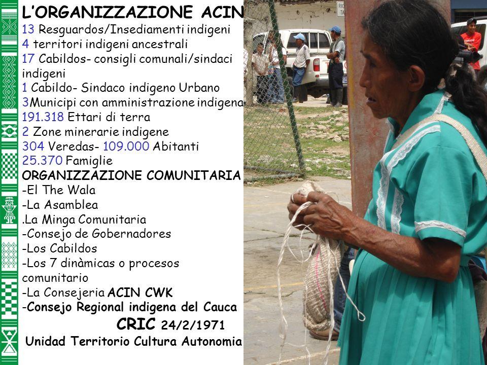 LORGANIZZAZIONE ACIN 13 Resguardos/Insediamenti indigeni 4 territori indigeni ancestrali 17 Cabildos- consigli comunali/sindaci indigeni 1 Cabildo- Sindaco indigeno Urbano 3Municipi con amministrazione indigena 191.318 Ettari di terra 2 Zone minerarie indigene 304 Veredas- 109.000 Abitanti 25.370 Famiglie ORGANIZZAZIONE COMUNITARIA -El The Wala -La Asamblea.La Minga Comunitaria -Consejo de Gobernadores -Los Cabildos -Los 7 dinàmicas o procesos comunitario -La Consejeria ACIN CWK -Consejo Regional indigena del Cauca CRIC 24/2/1971 Unidad Territorio Cultura Autonomia