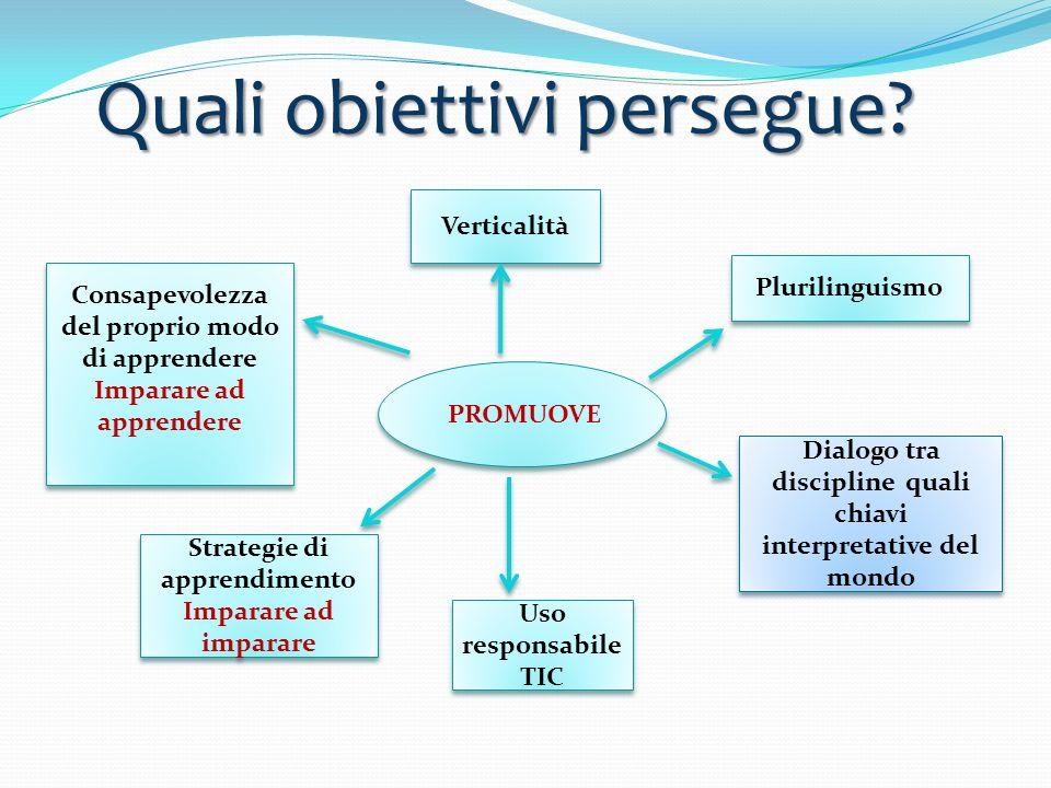Quali obiettivi persegue? Verticalità PROMUOVE Plurilinguismo Dialogo tra discipline quali chiavi interpretative del mondo Uso responsabile TIC Strate