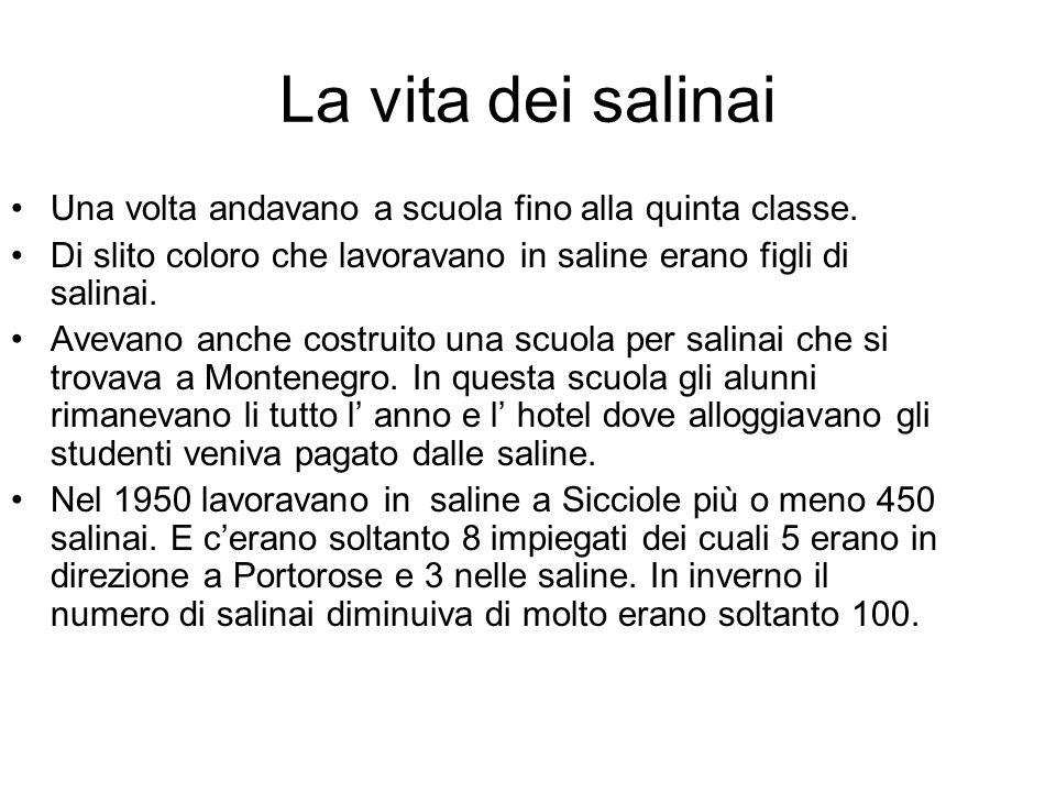 La vita dei salinai Una volta andavano a scuola fino alla quinta classe. Di slito coloro che lavoravano in saline erano figli di salinai. Avevano anch