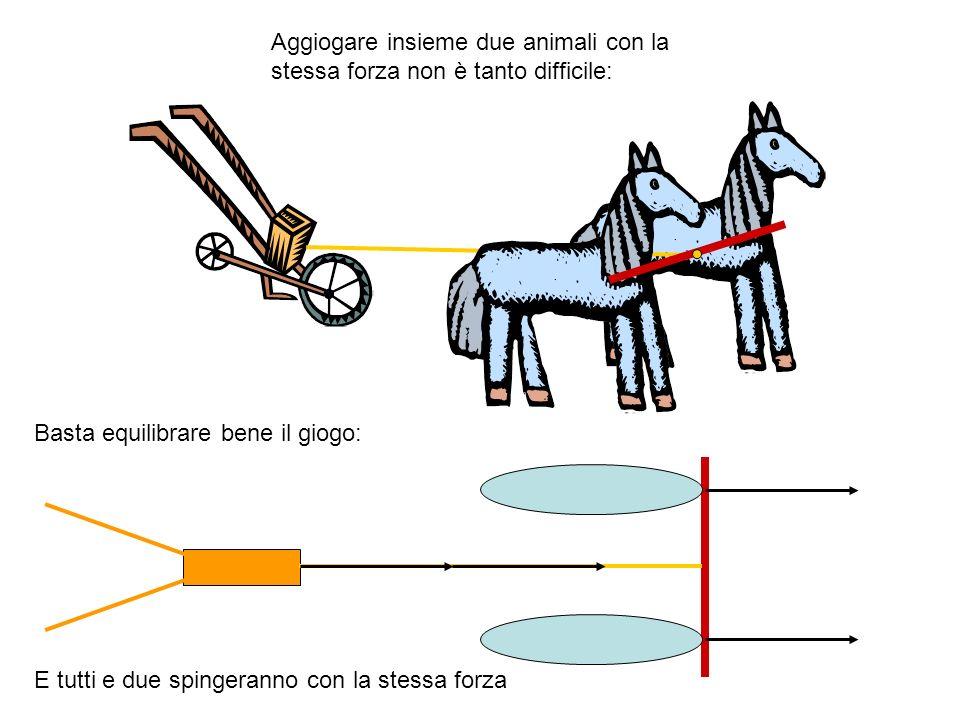 Aggiogare insieme due animali con la stessa forza non è tanto difficile: Basta equilibrare bene il giogo: E tutti e due spingeranno con la stessa forz