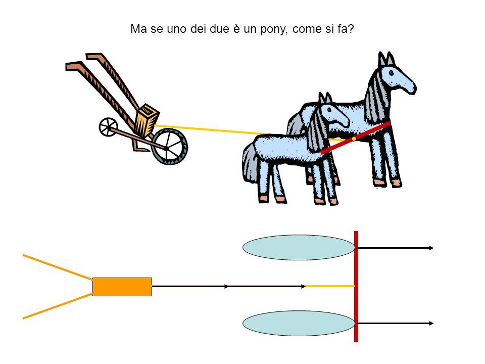 Ma se uno dei due è un pony, come si fa?