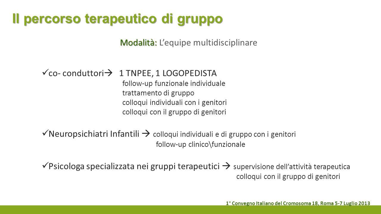 Il percorso terapeutico di gruppo Modalità: Modalità: Lequipe multidisciplinare co- conduttori 1 TNPEE, 1 LOGOPEDISTA follow-up funzionale individuale
