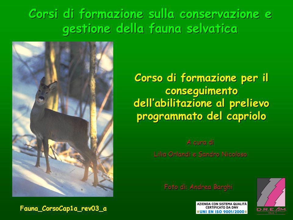 Corsi di formazione sulla conservazione e gestione della fauna selvatica Foto di: Andrea Barghi A cura di Lilia Orlandi e Sandro Nicoloso Corso di for