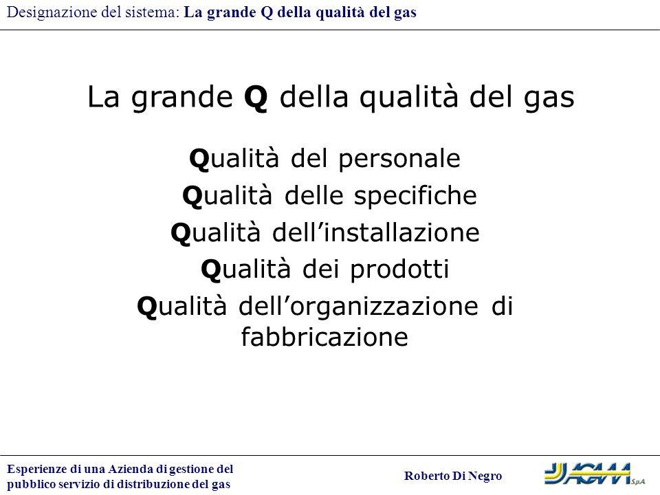 Esperienze di una Azienda di gestione del pubblico servizio di distribuzione del gas Roberto Di Negro Designazione del sistema: La grande Q della qual
