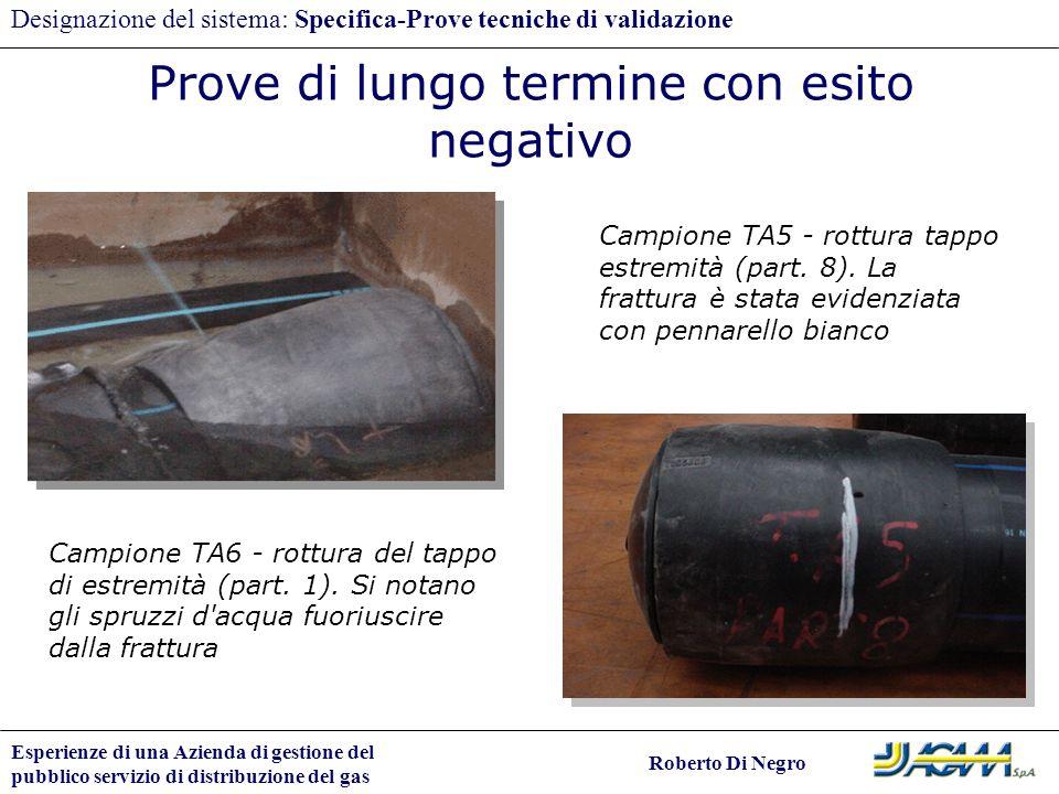 Esperienze di una Azienda di gestione del pubblico servizio di distribuzione del gas Roberto Di Negro Designazione del sistema: Specifica-Prove tecnic