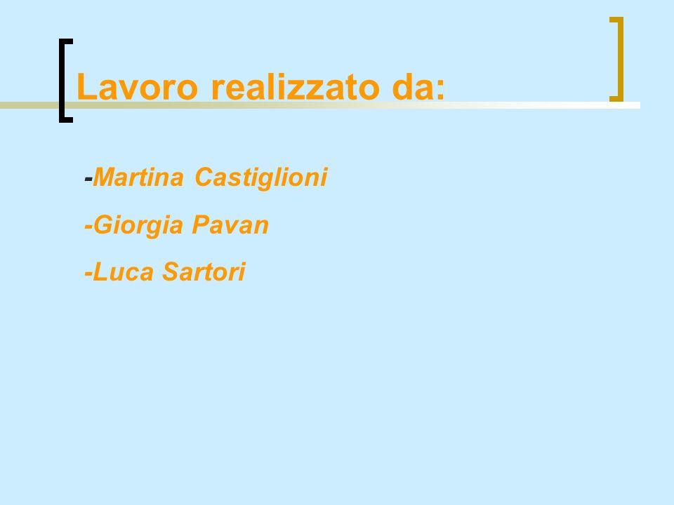 Lavoro realizzato da: -Martina Castiglioni -Giorgia Pavan -Luca Sartori
