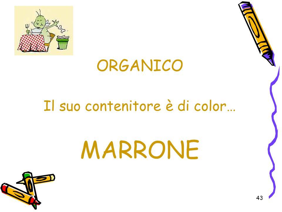 43 ORGANICO Il suo contenitore è di color… MARRONE