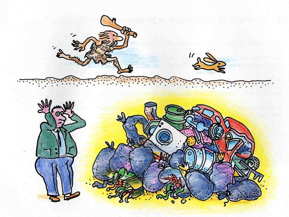 30 In media la carta e il cartone formano il 25% dei nostri rifiuti… Una famiglia di 4 persone in un anno può recuperare una quantità di carta corrispondente ad un albero