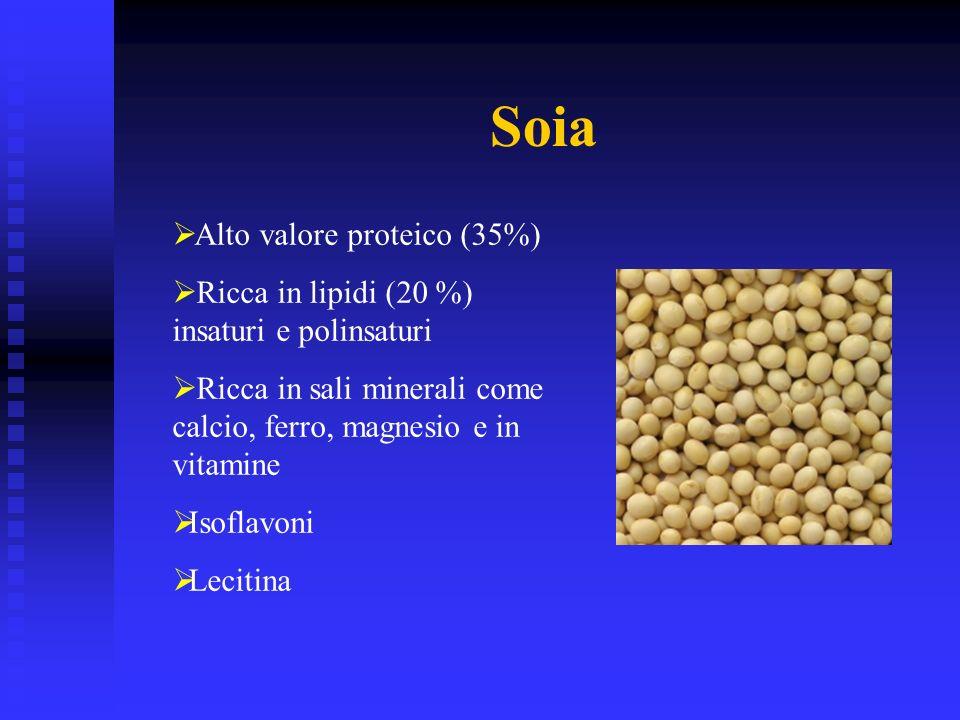 Soia Alto valore proteico (35%) Ricca in lipidi (20 %) insaturi e polinsaturi Ricca in sali minerali come calcio, ferro, magnesio e in vitamine Isofla