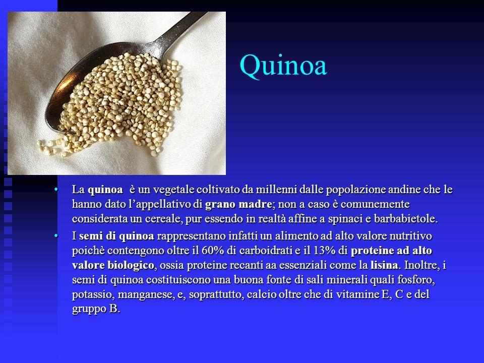 Quinoa La quinoa è un vegetale coltivato da millenni dalle popolazione andine che le hanno dato lappellativo di grano madre; non a caso è comunemente
