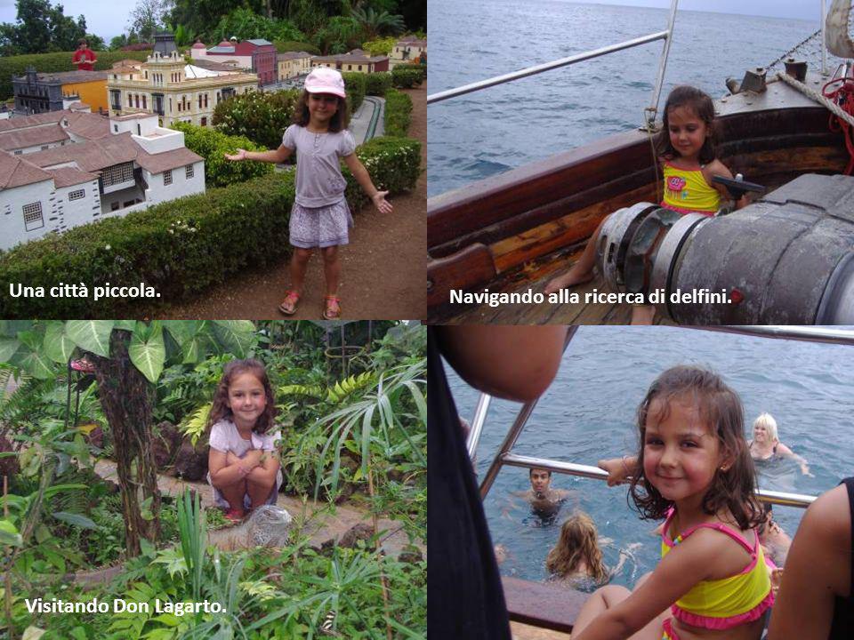 Foto di famiglia di fronte a Pico Viejo.