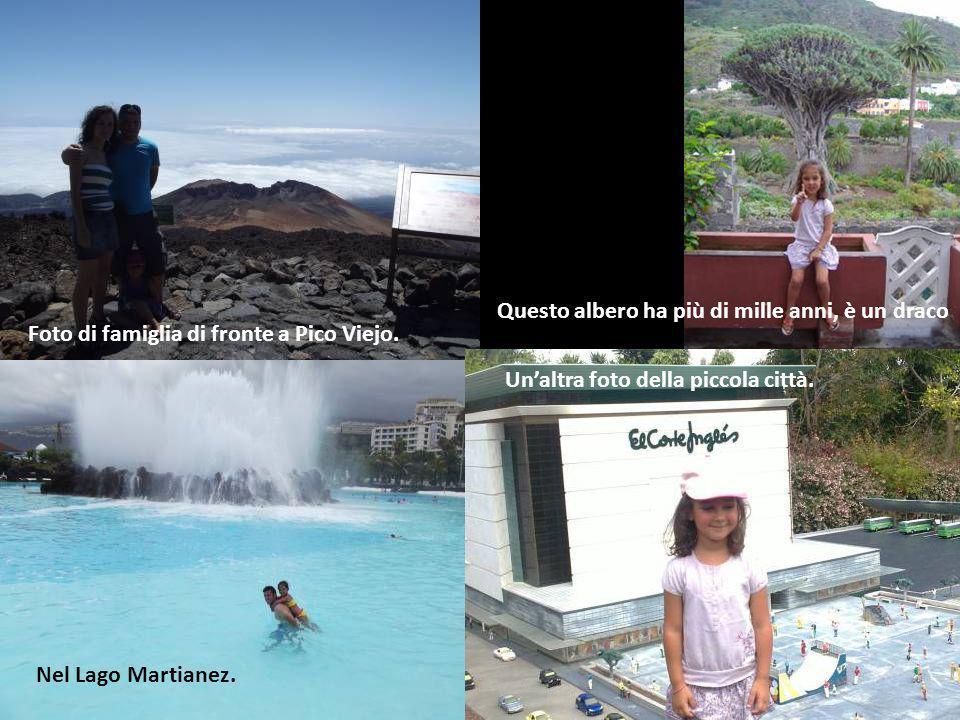 Farfalle nel Loro Park.Con i miei amici a Tenerife.